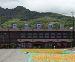 shot of the Taimali Railway Station, showing jinzhen flowers drying on the road